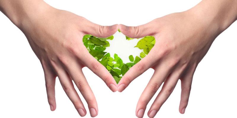La salut a les teves mans (12 i 13-11-2016)