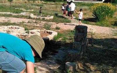 Visita en família: Colònia d'herbes (7-10-2017)